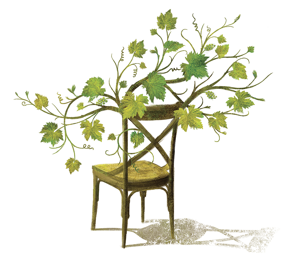 Each varietal featured a different classic chair sprouting vines to suit the wine. The chair above is from the Chardonnay label.
